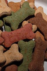 dog-food1