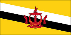 bruneis-flagga