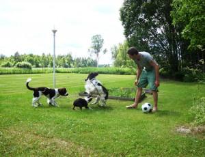 Stuart med hundtrio