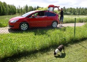 Tommie, bilen & Teo